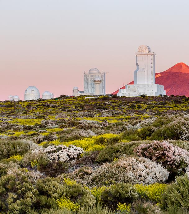 Spring at the Observatorio del Teide (Tenerife)