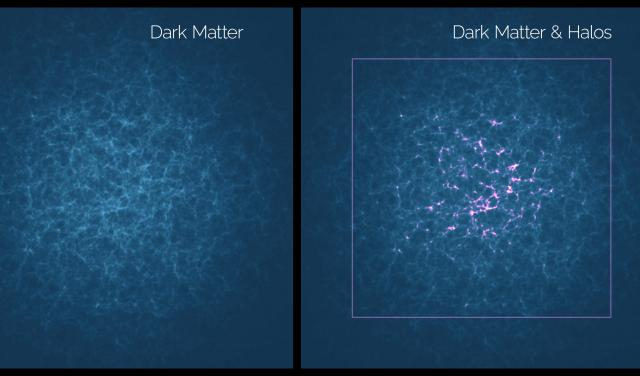 Distribution of dark matter and its tracers (halos). Credit: Gabriel Pérez Díaz, SMM (IAC).